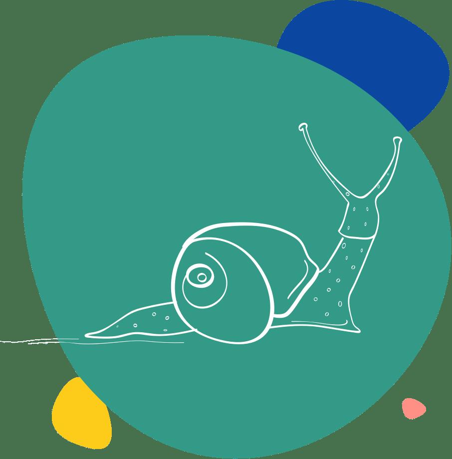 Dessin d'escargot